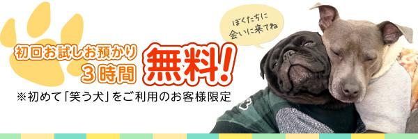 画像:初回お試しお預かり3時間無料!※初めて「笑う犬」をご利用のお客様限定