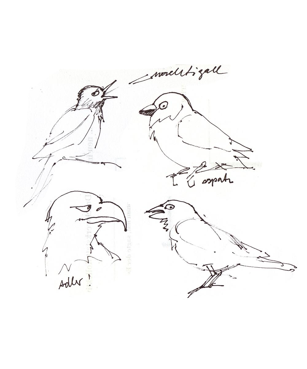 Skizze zu Jorinde und Joringel