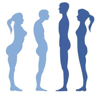 Körperstruktur und Körperfunktion