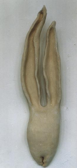 Naturstudie, Keramik, unglasiert, 1997 (48 x 21,5 x 16,8 cm)