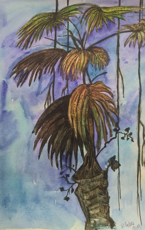 Palme im Gewitter, 2019, Aquarell auf Papier, 40 x 30 cm