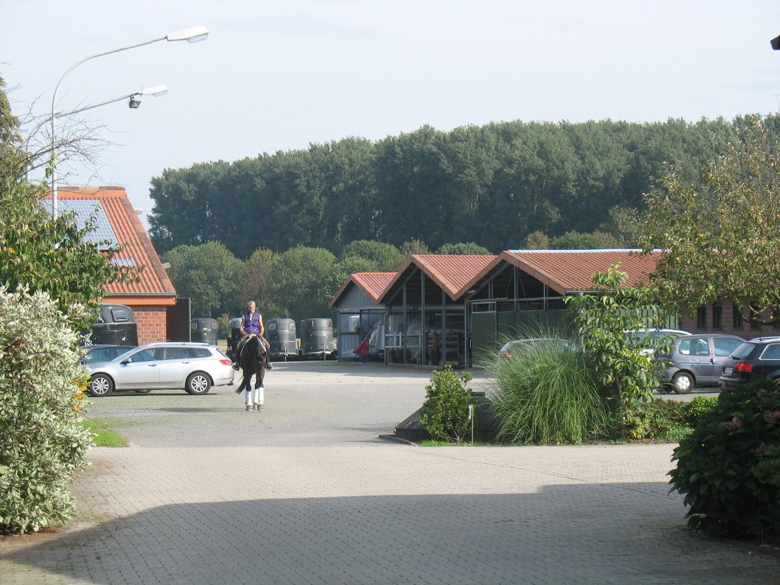 Blick auf den Weg zur Halle, der Longierhalle und der Führanlage