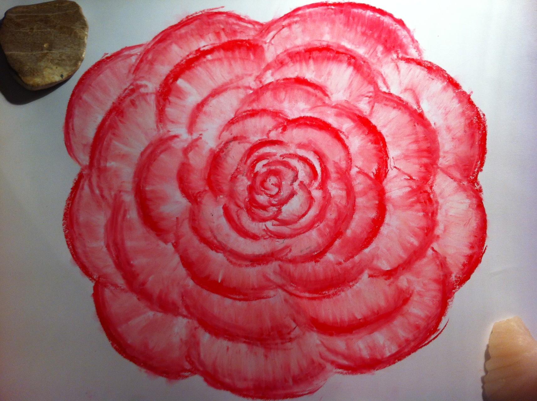 die Blume des Buddha