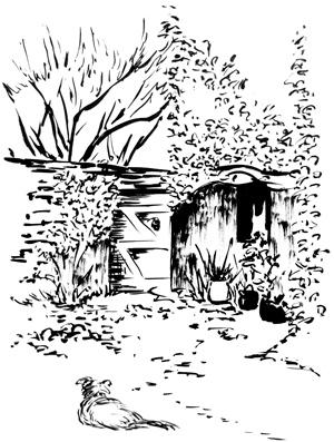 La maison des blés - jardin - dessin à l'encre de chine