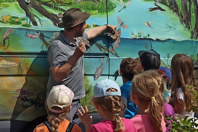 Am Schaubild lernen die Kinder den Lebensraum Fluss kennen, Foto: Josefine Beims
