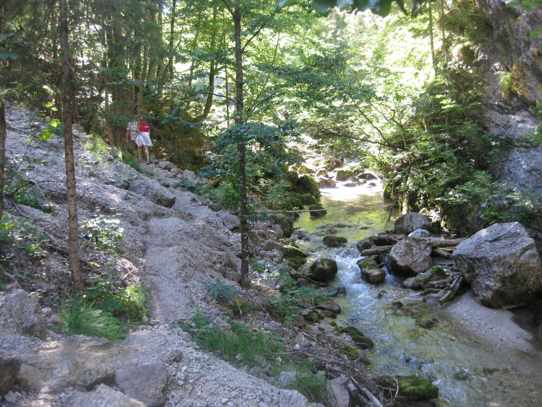 der schmale Steig führt den Klammbach entlang, dann wieder mitten durch oder über Stege darüber weg