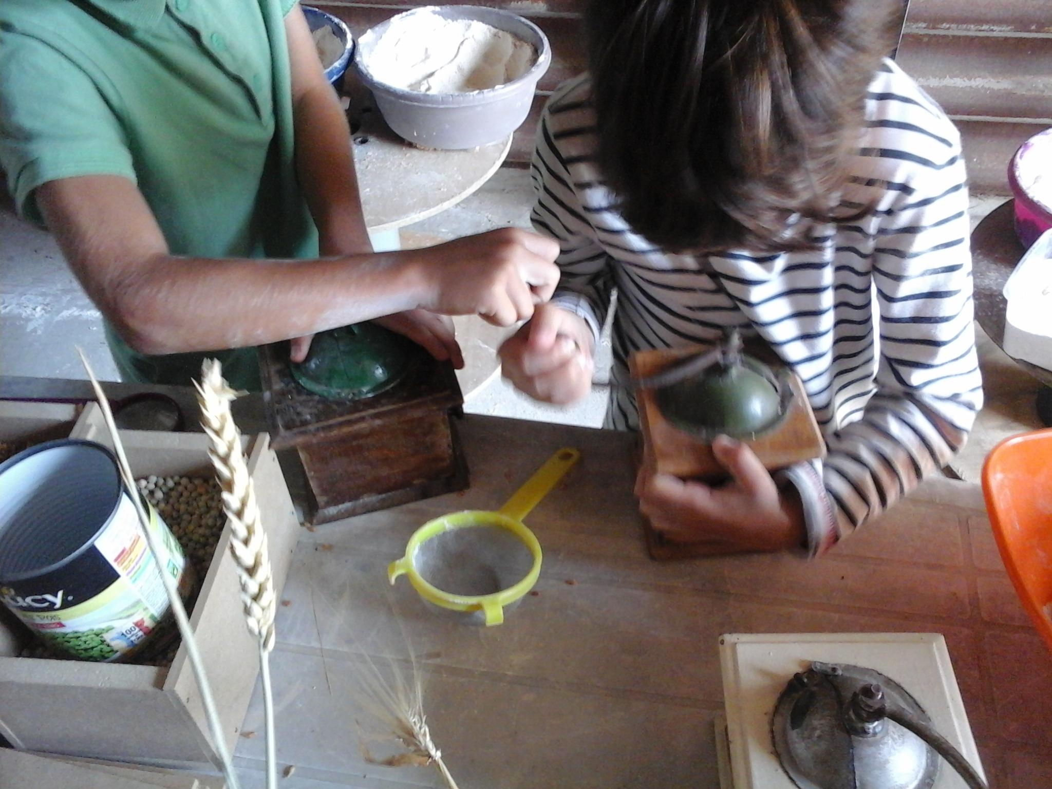 Moudre du blé avec des moulins à café