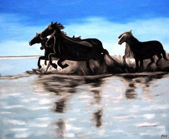412 - Pferde in der Carmargue, 2009