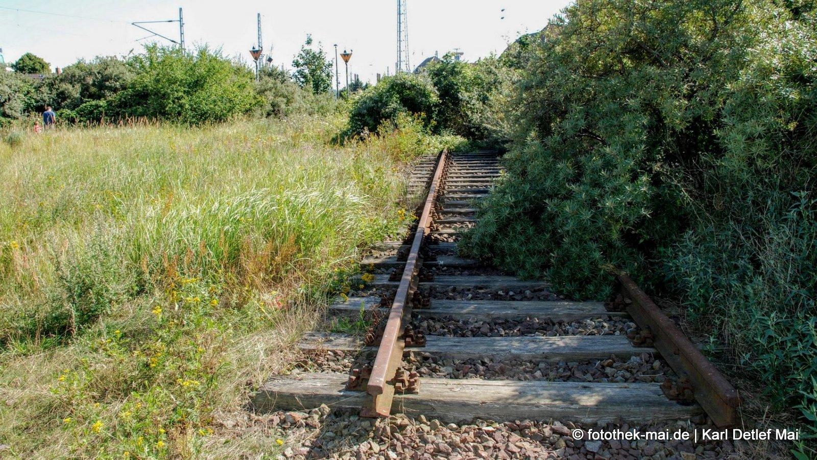 Bahn frei? // Ende des Gleises in Warnemünde - nur wegen der Ostsee?