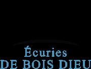 Haras du Bois Dieu logo
