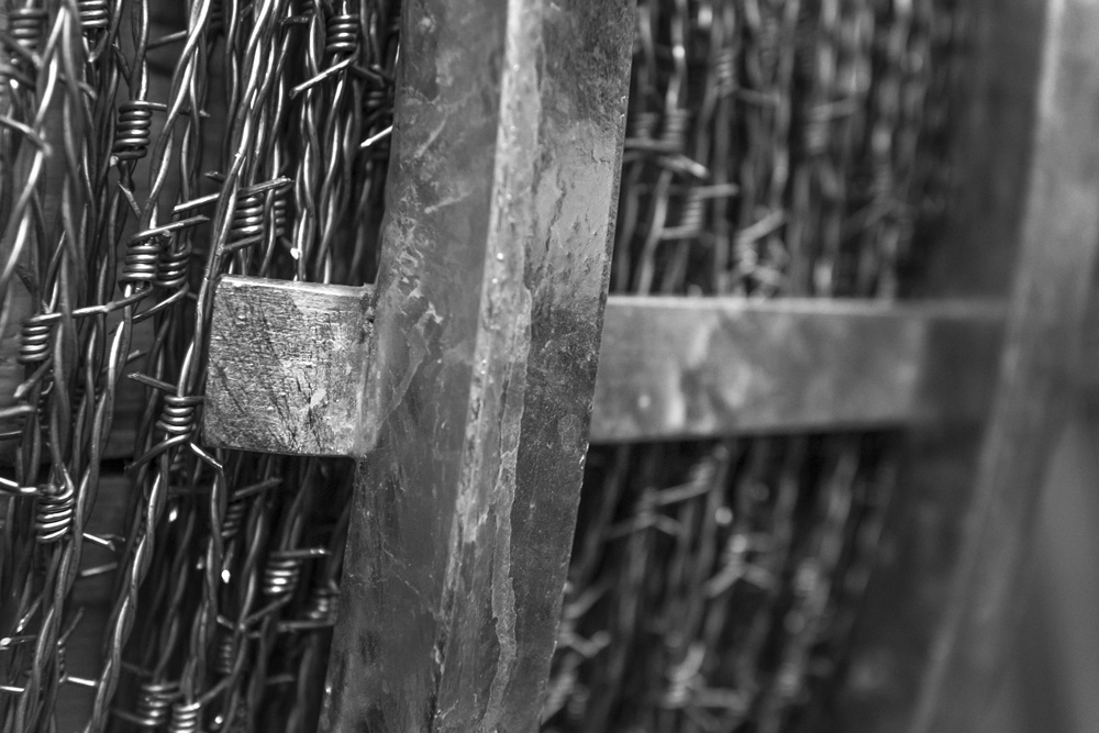 Barbed Circle Detail