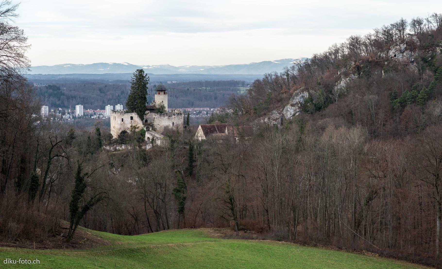 Schloss Birseck