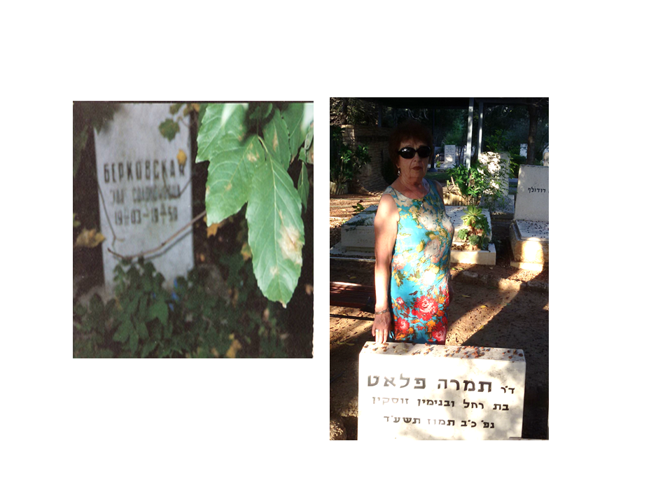 Gravestones: to my mother Eda Berkovskaya (left), Moscow, 1959, and to my sister Dr Tamara Platt (born Zuskin), Israel, 2014