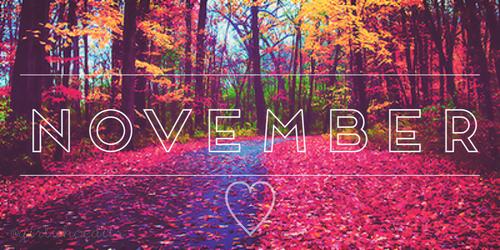 November, Trauer, Nebel,