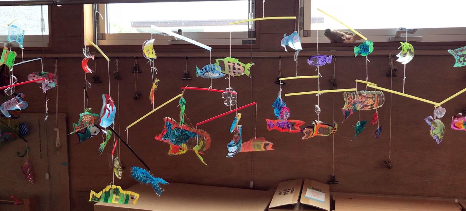 熱帯魚空中遊泳