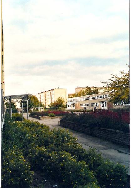 Die alten Hochbeete vor der Schule