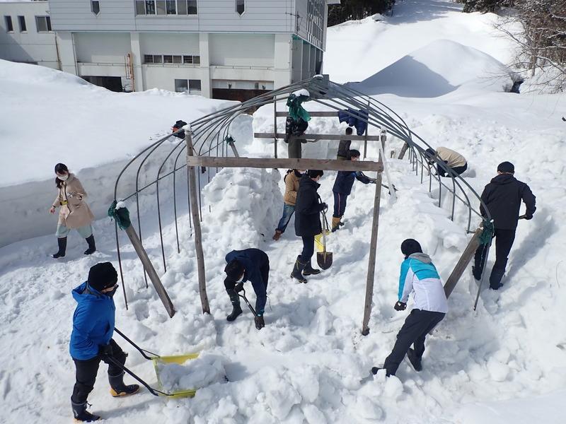 国際スポーツ雪かき選手権&ビニールハウスで苗づくり