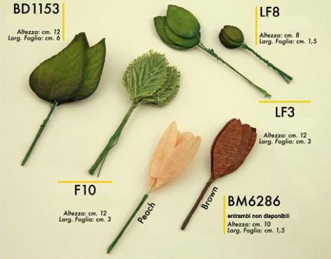 foglie € 1,50 da 12 pz