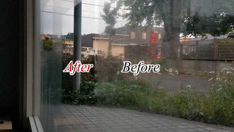 ウロコ除去 Before/After