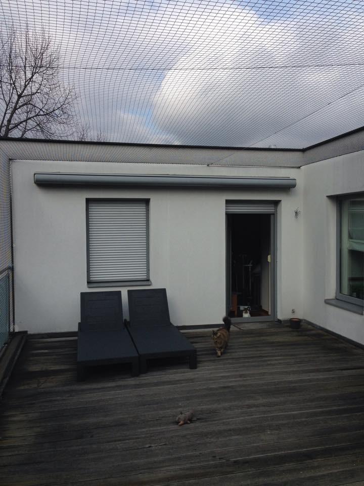 Berühmt Sicherung von Balkonen und Gärten - Tierschutzverein Pfötchenhilfe DV99