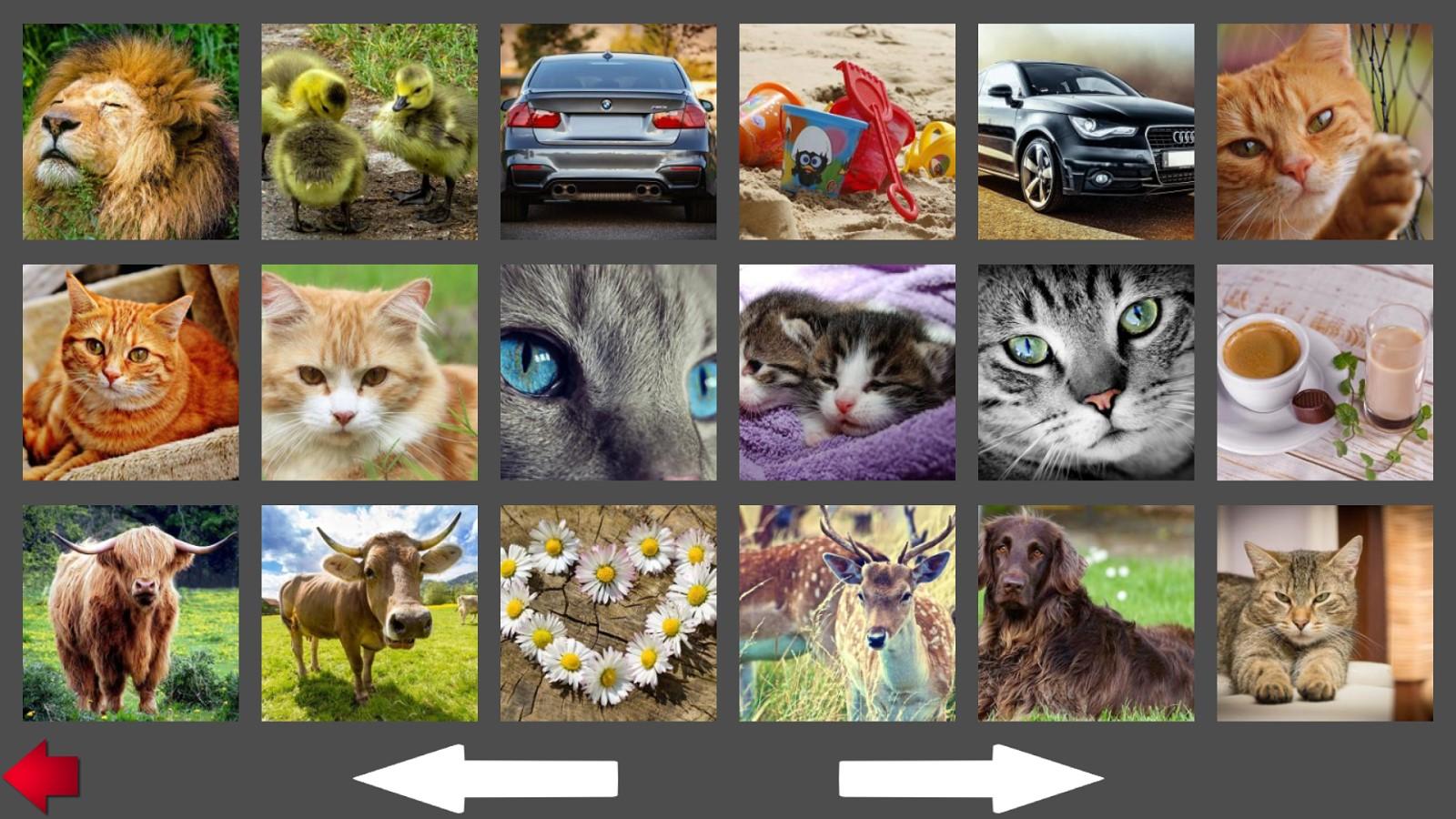 Auswahl eines Puzzlebildes (aus mehr als 100 Bildern)