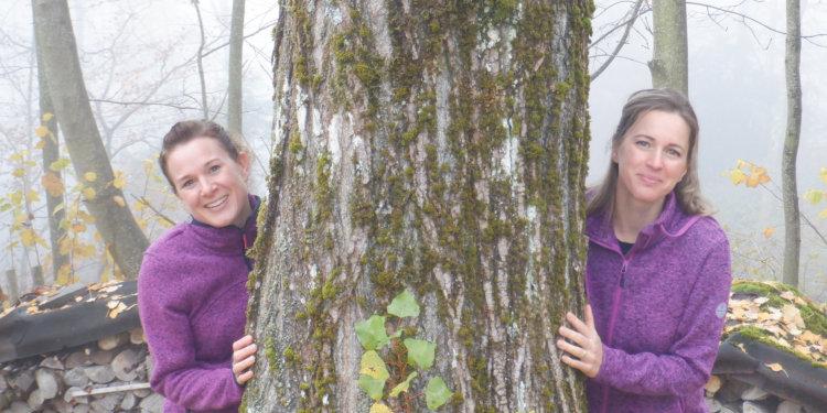 WABESI: Neue Waldspielgruppe zwischen Grüt und Wetzikon