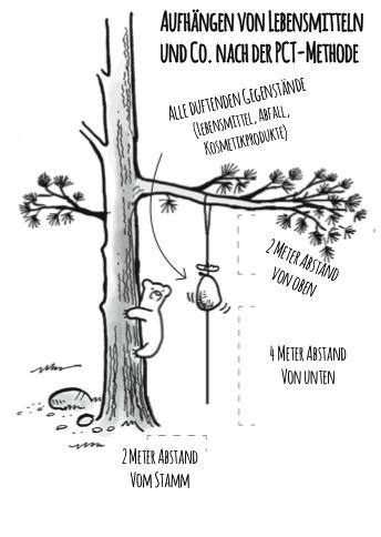 """Am unsichersten ist wohl die """"Aufhäng-Methode"""". Insbesondere weil es im hohen Norden schwierig ist, genügend grosse und dicke Bäume zu finden. Zudem sind Bären sehr erfinderisch, um an Essen zu gelangen."""