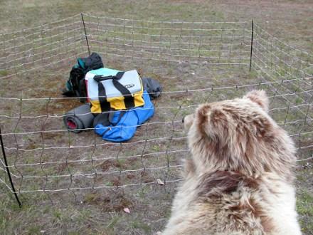 Eine weitere Variante ist ein portabler Elektrozaun. Dieser eignet sich vor allem bei Camps, die für längere Zeit aufgestellt werden (z.B. Basecamp) oder für Jäger, die ihre geschossenen Tiere beim Zeltplatz aufbewahren.