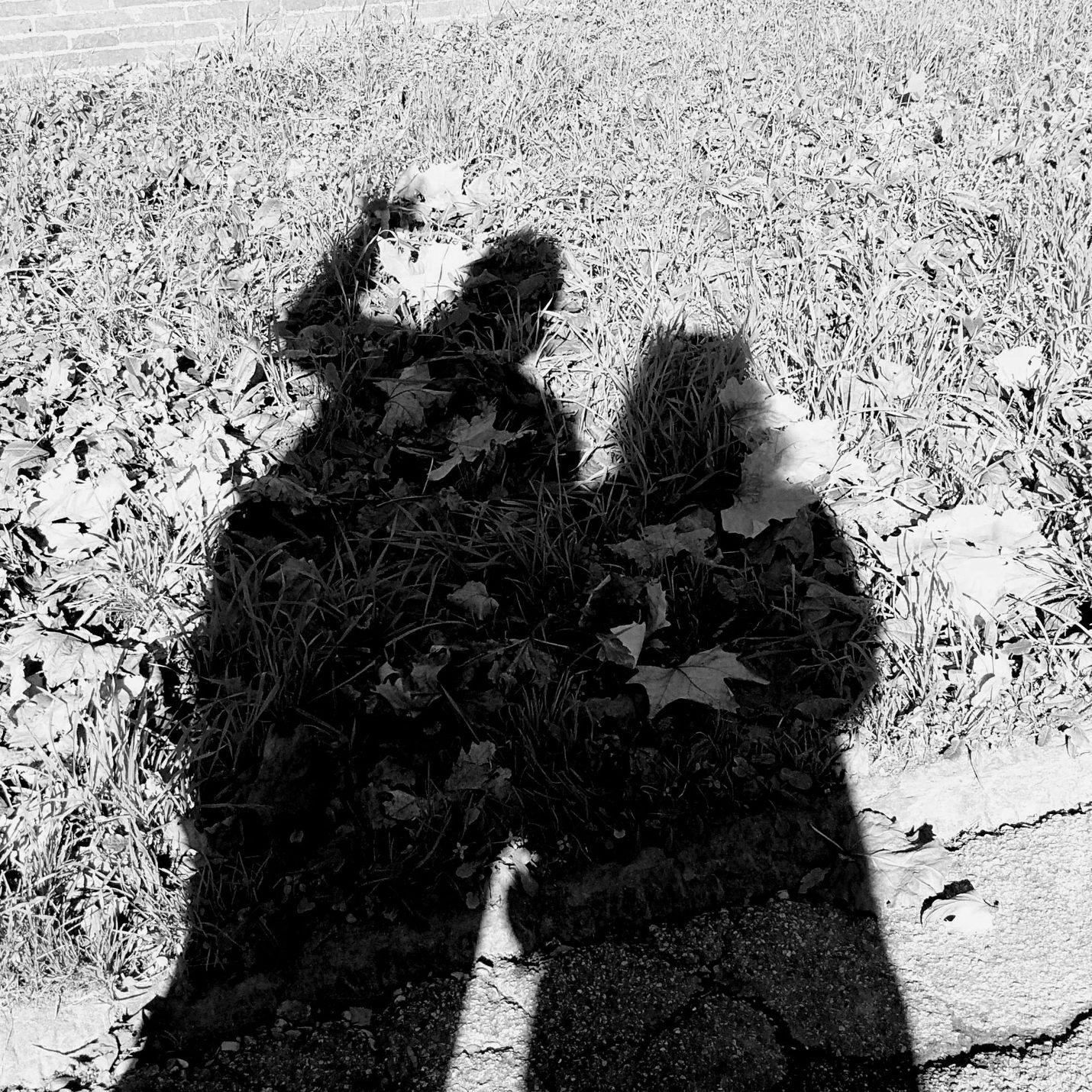 Ovunque radicanti - fotografia di Vittorio Ferorelli e Francesca Pirrone