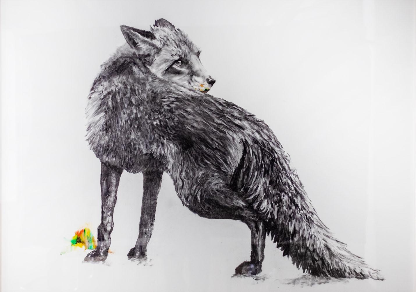 Fuchs 100x140cm charcoal, watercolor 2021