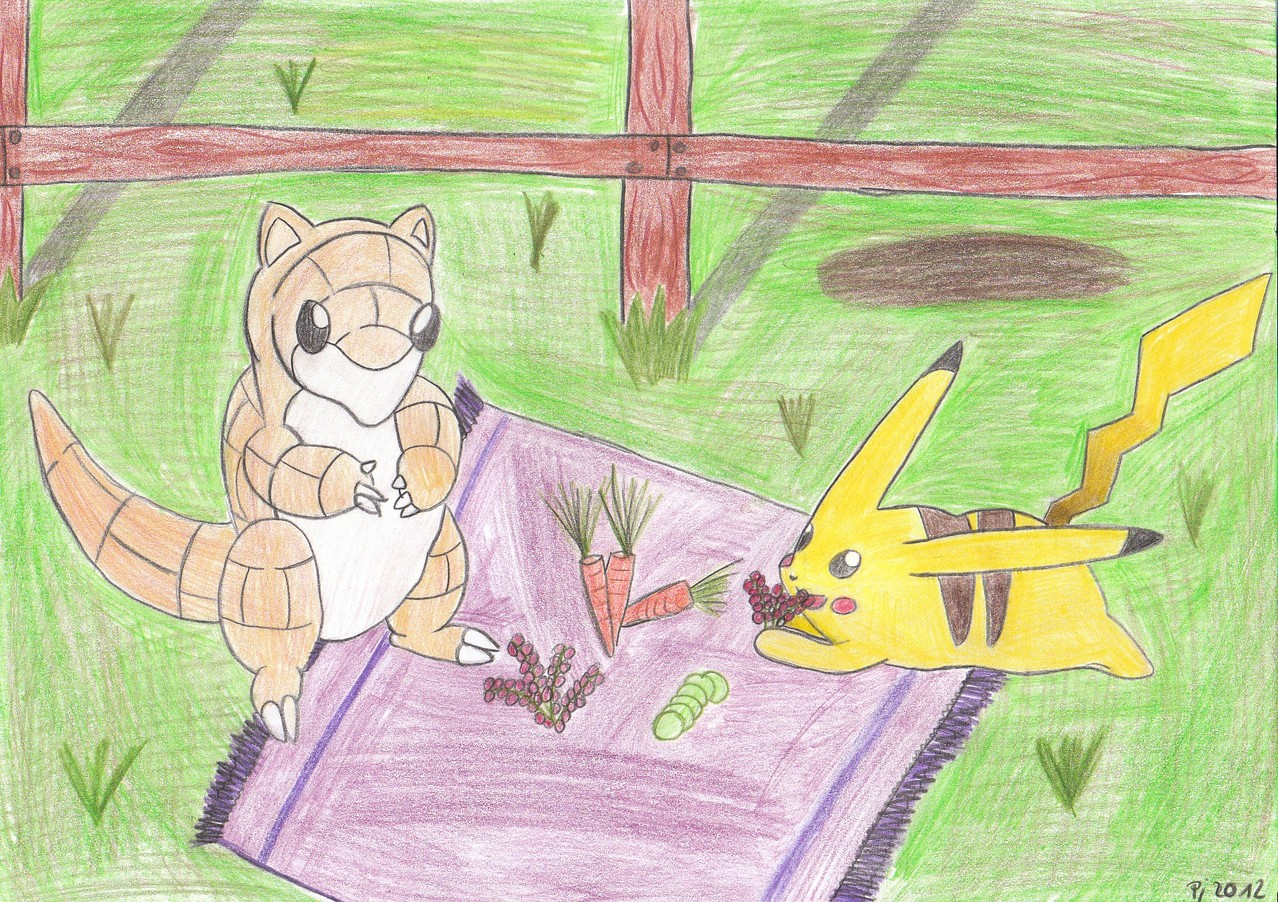 Picknick mit Pikachu und Sandamer
