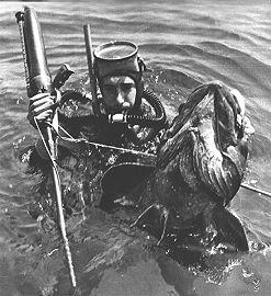 Alcedo Hydra, fusil hidroneumatico de 1957