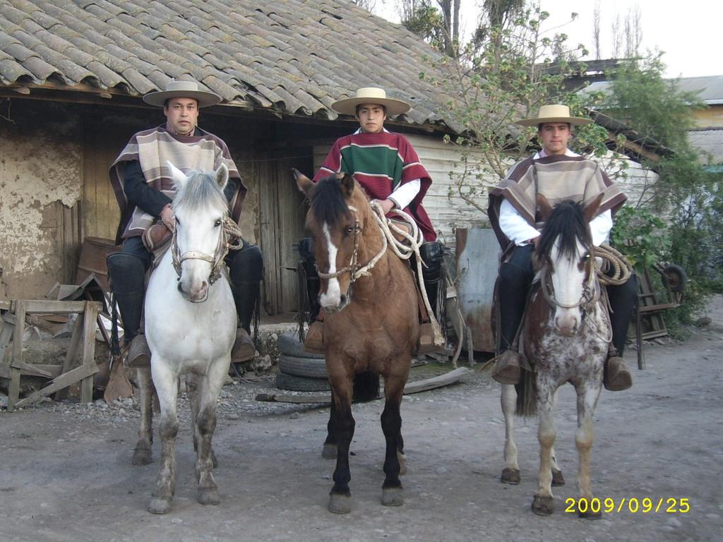 Huasos del sector : Marcelo González Muñoz, Braulio González Donoso y Sergio González Leyton