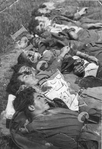 I corpi dei novi partigiani uccisi a Santa Maria di Curino (Archivio fotografico dell'Istituto per la storia della Resistenza e della società contemporanea nel Biellese, nel Vercellese e in Valsesia, fondo A. Giachetti)