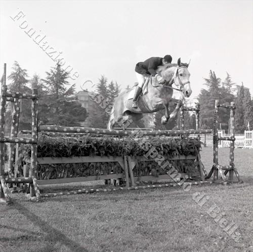 """Concorso ippico allo stadio """"Lamarmora"""", 1966 (Fondazione Cassa di Risparmio di Biella, archivio Lino Cremon)"""