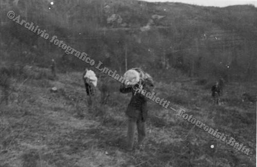 Recupero del materiale (© Archivio fotografico Luciano Giachetti - Fotocronisti Baita, Vercelli)