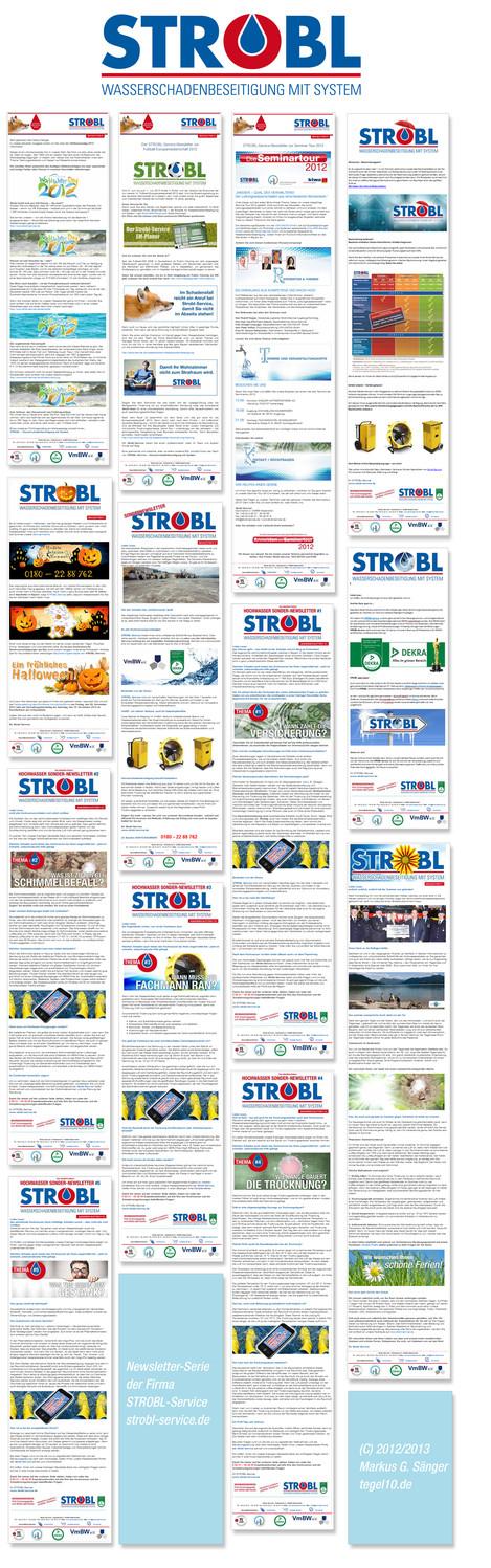 Newsletter-Serie 2012/2013