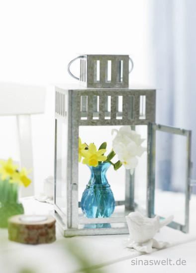 Mein garten fr hlingsblumen f r garten balkon wohnung for Wohnung kreativ dekorieren