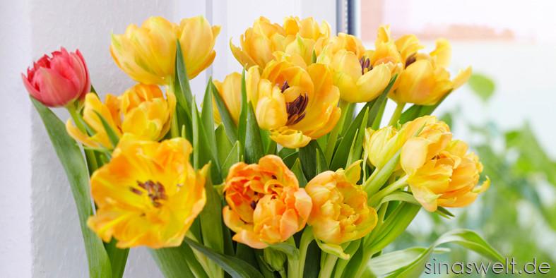 Blumen, Schnittblumen, mit Pflanzen wohnen, Interview, so halten Blumen länger, Vase, Dekoidee mit Blumen, Selbstliebe, schenken, sich selbst beschenken, Pflegetipps, Tipps zur Pflege, verschenken, Geschenke