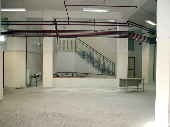 "Before. Τhe same hall, equipped with a small ... garden ""intra-muros""."
