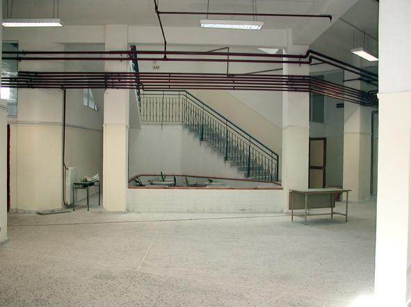 """Avant : le même hall, équipé d'un ...petit jardin """"intra-muros"""""""