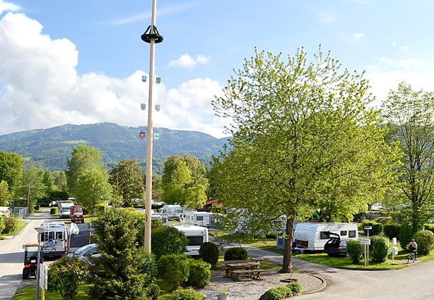 Maibaum im Kaiser Camping Bad Filnbach