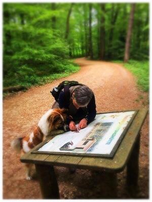 Hundeerziehung Bonn