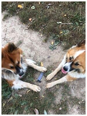Wir haben gemeinsam den Schlüssel gefunden...jippiju