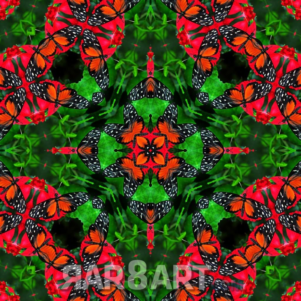 RAR8ART Mandala NK 03