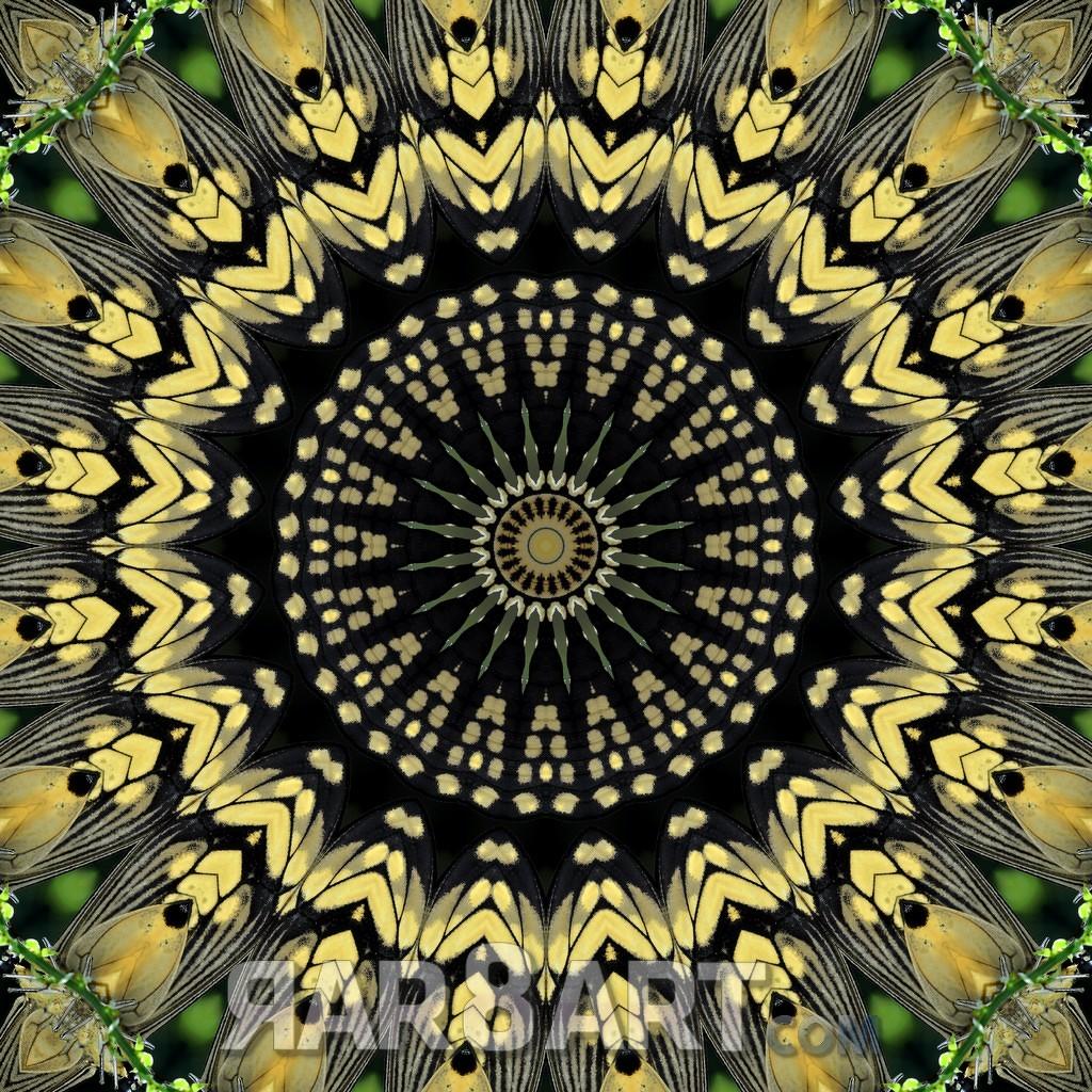 RAR8ART Mandala NK 05