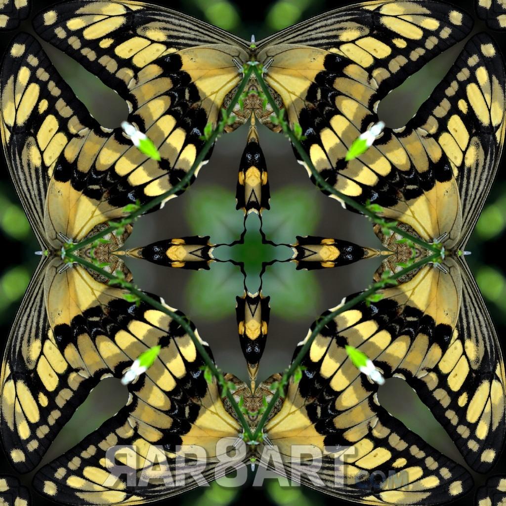 RAR8ART Mandala NK 04