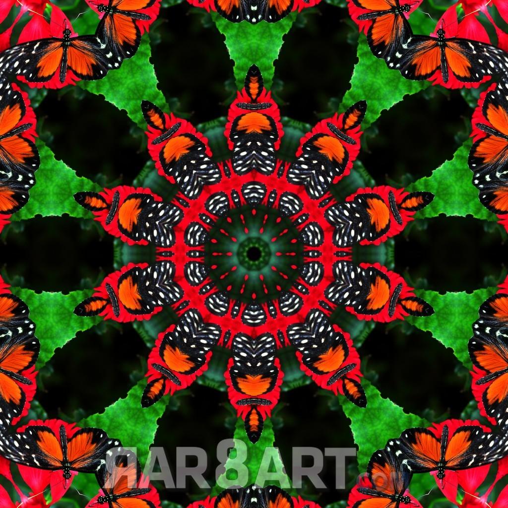 RAR8ART Mandala NK 02