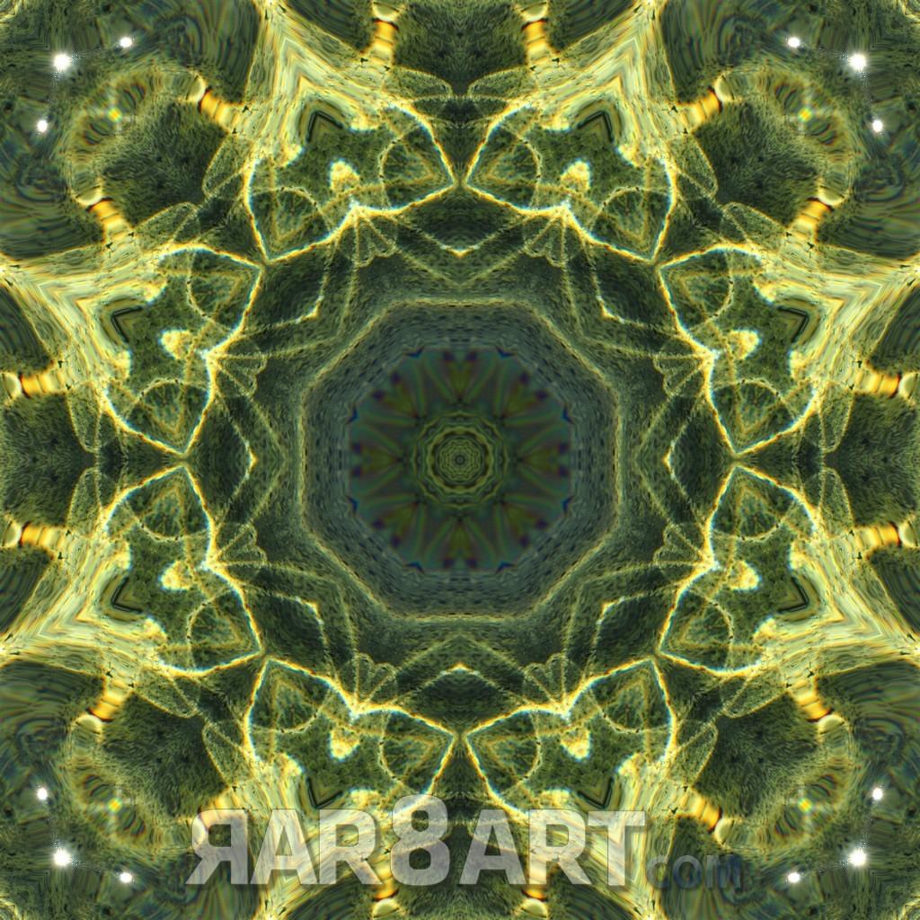 RAR8ART Mandala WH 2