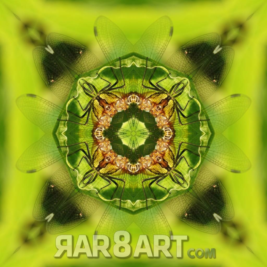 RAR8ART Mandala NK 01
